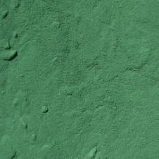 Spirulina Poeder (500ml)